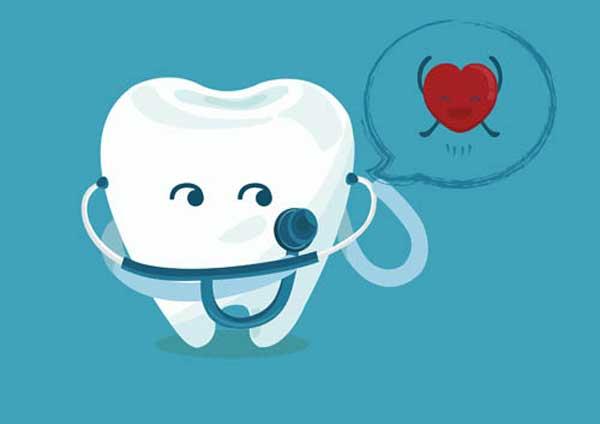 سلامت قلب و دندان ها